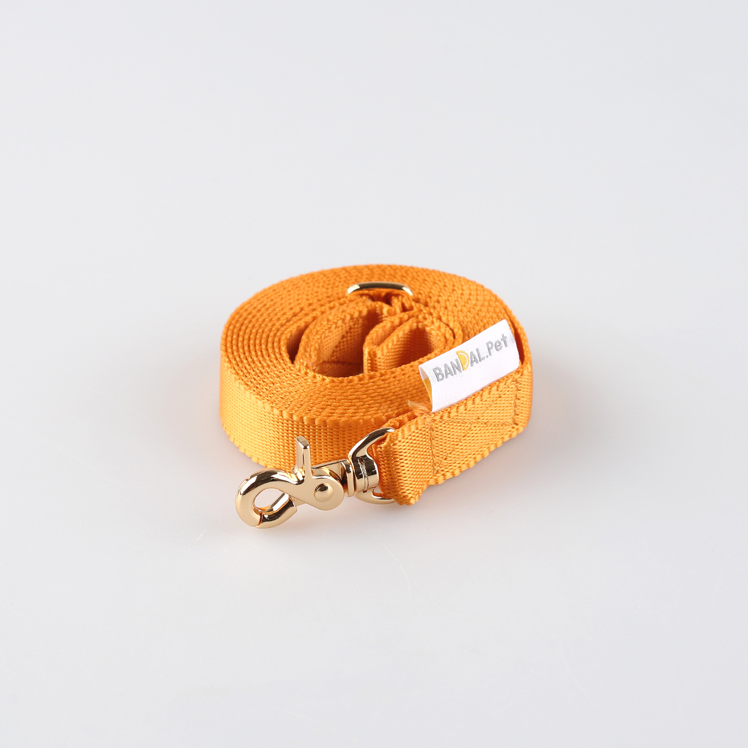 All day Leash_yellow
