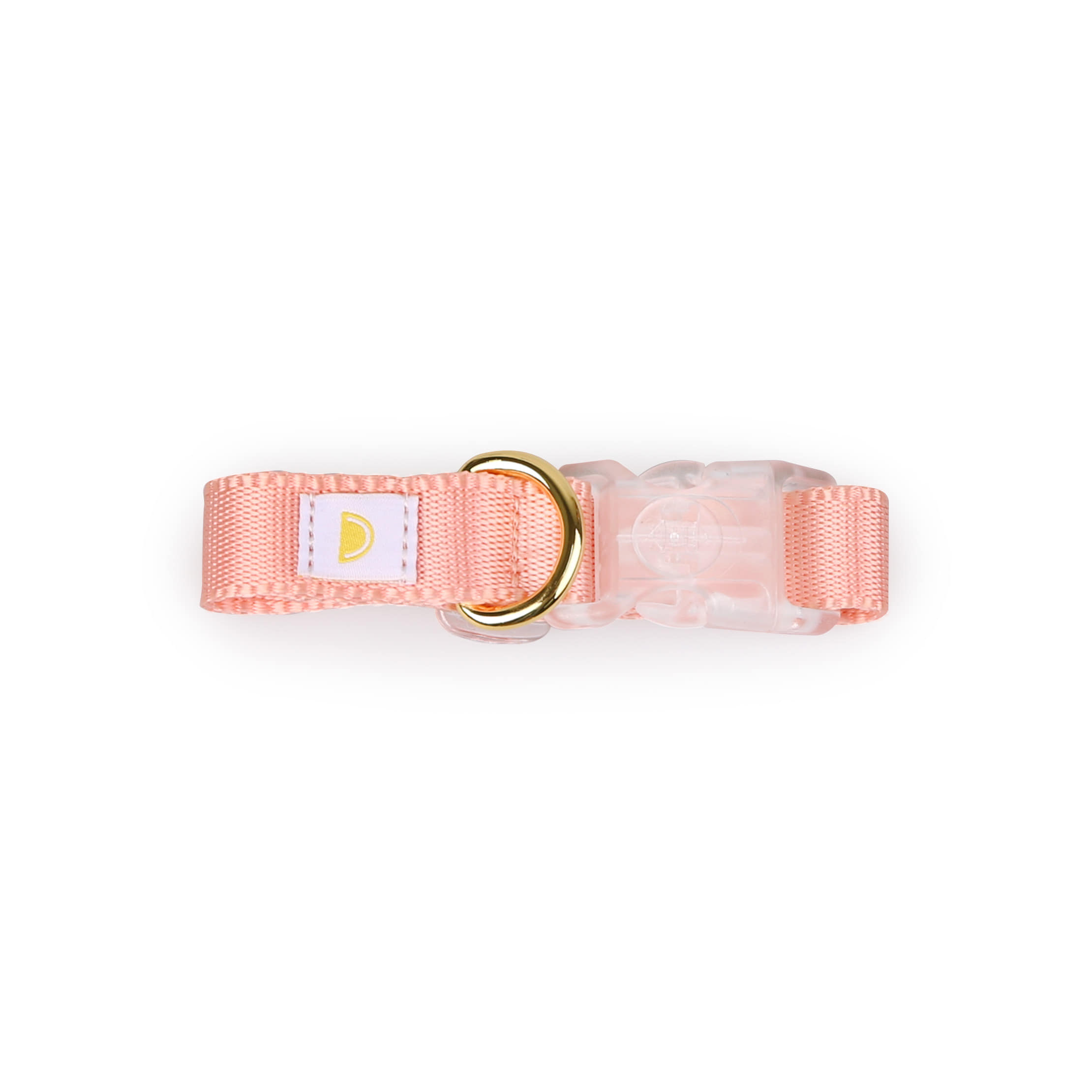 All day collar_pink