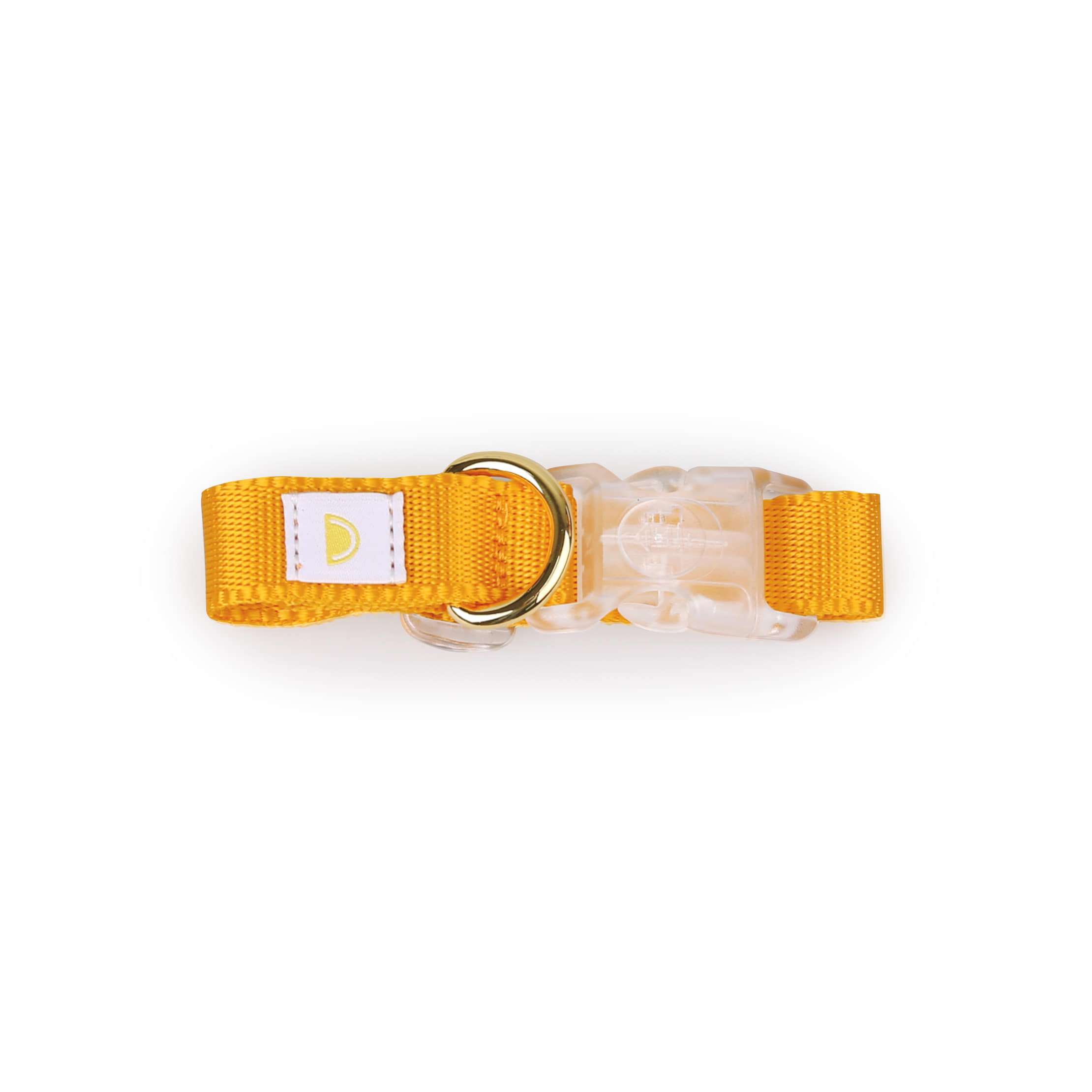 All day collar_yellow